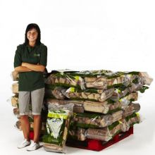 Kiln Dried Logs - 50 Bag Pallet